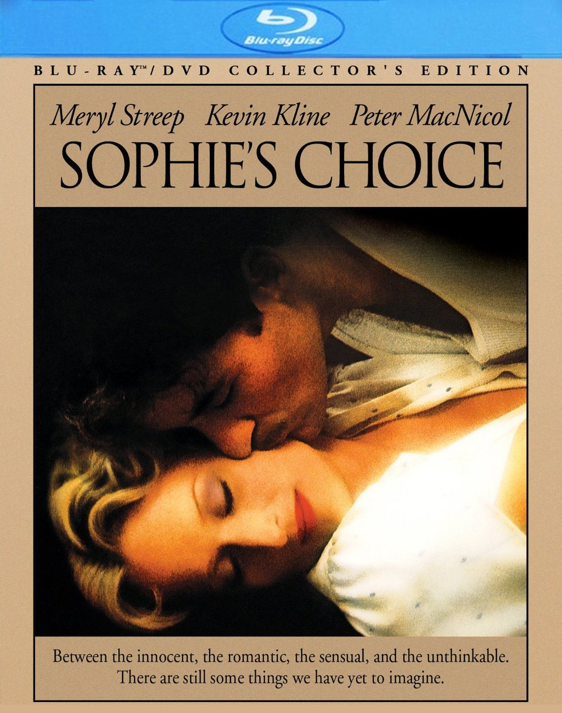 the sophies choice essay Sophie's world: a novel about the history of philosophy jostein gaarder, author, paulette miller soon, though, sophie begins receiving other.