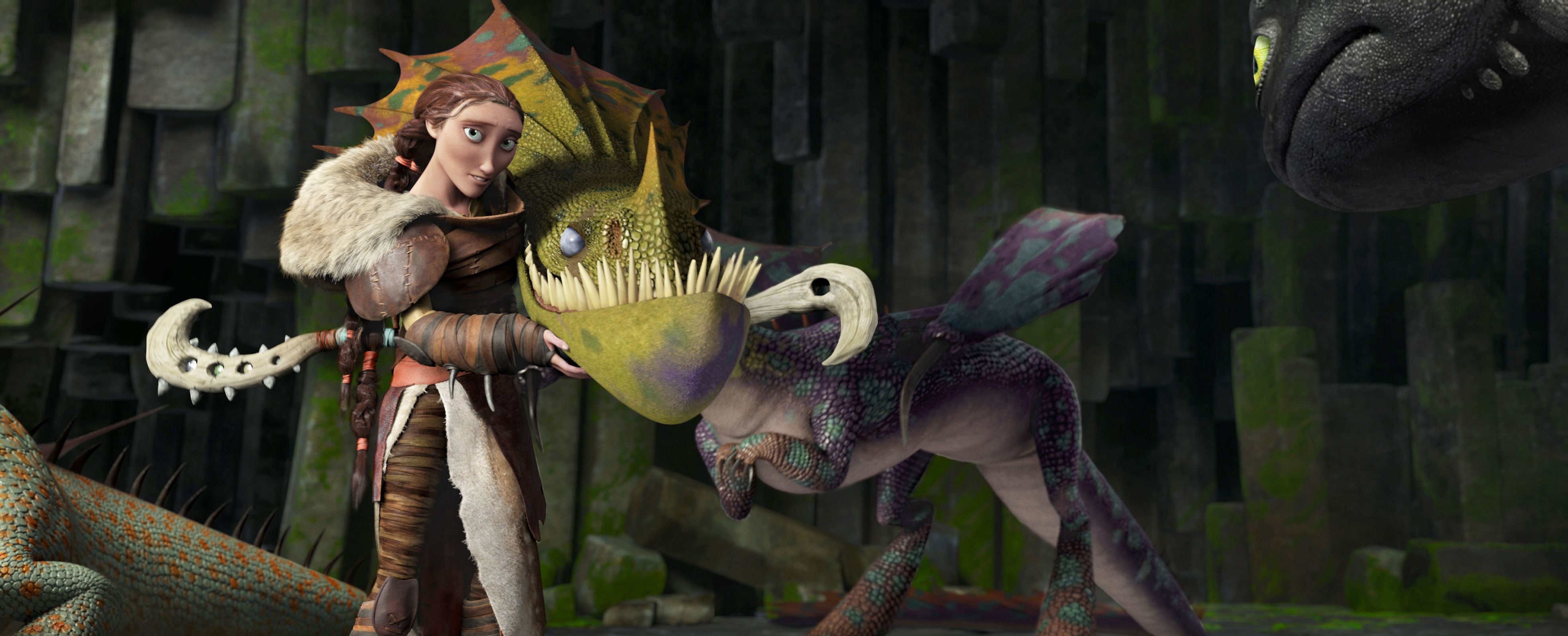 An image from How to Train Your Dragon 2
