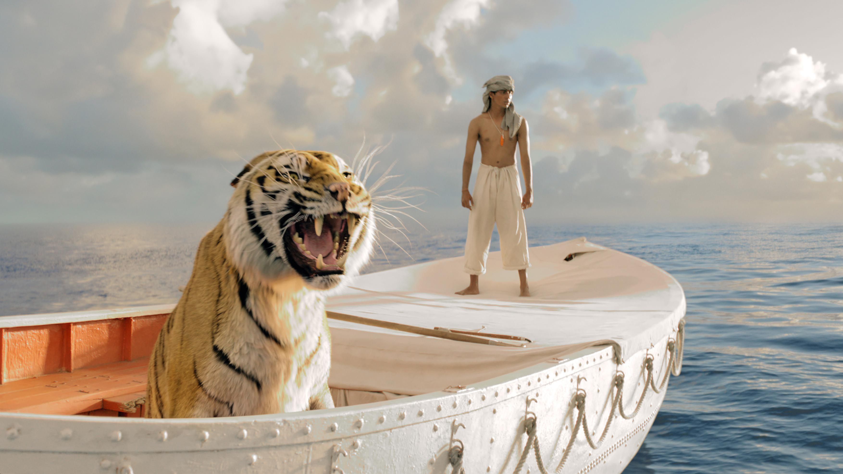 An image from Life of Pi