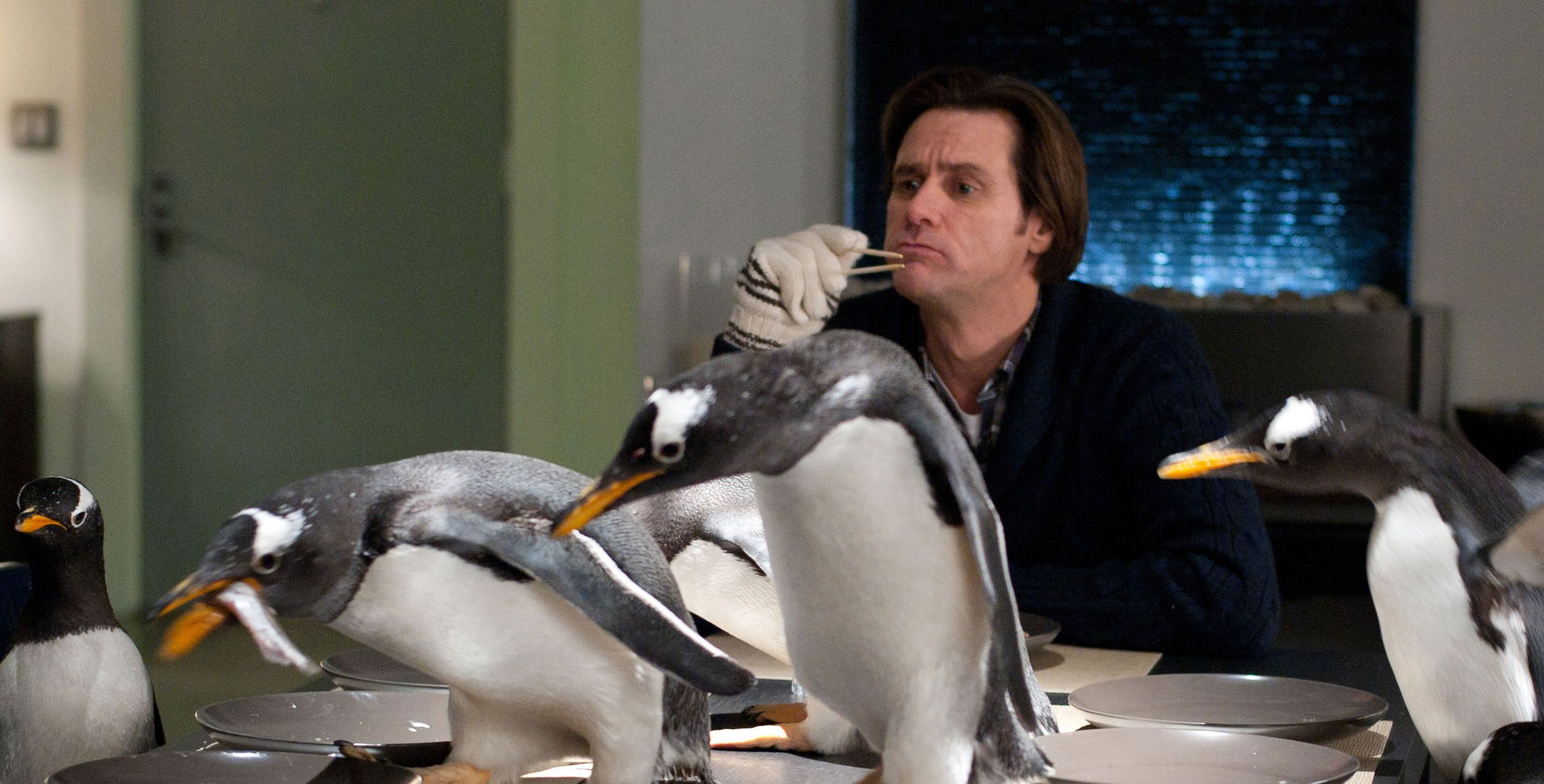 An image from Mr. Popper's Penguins