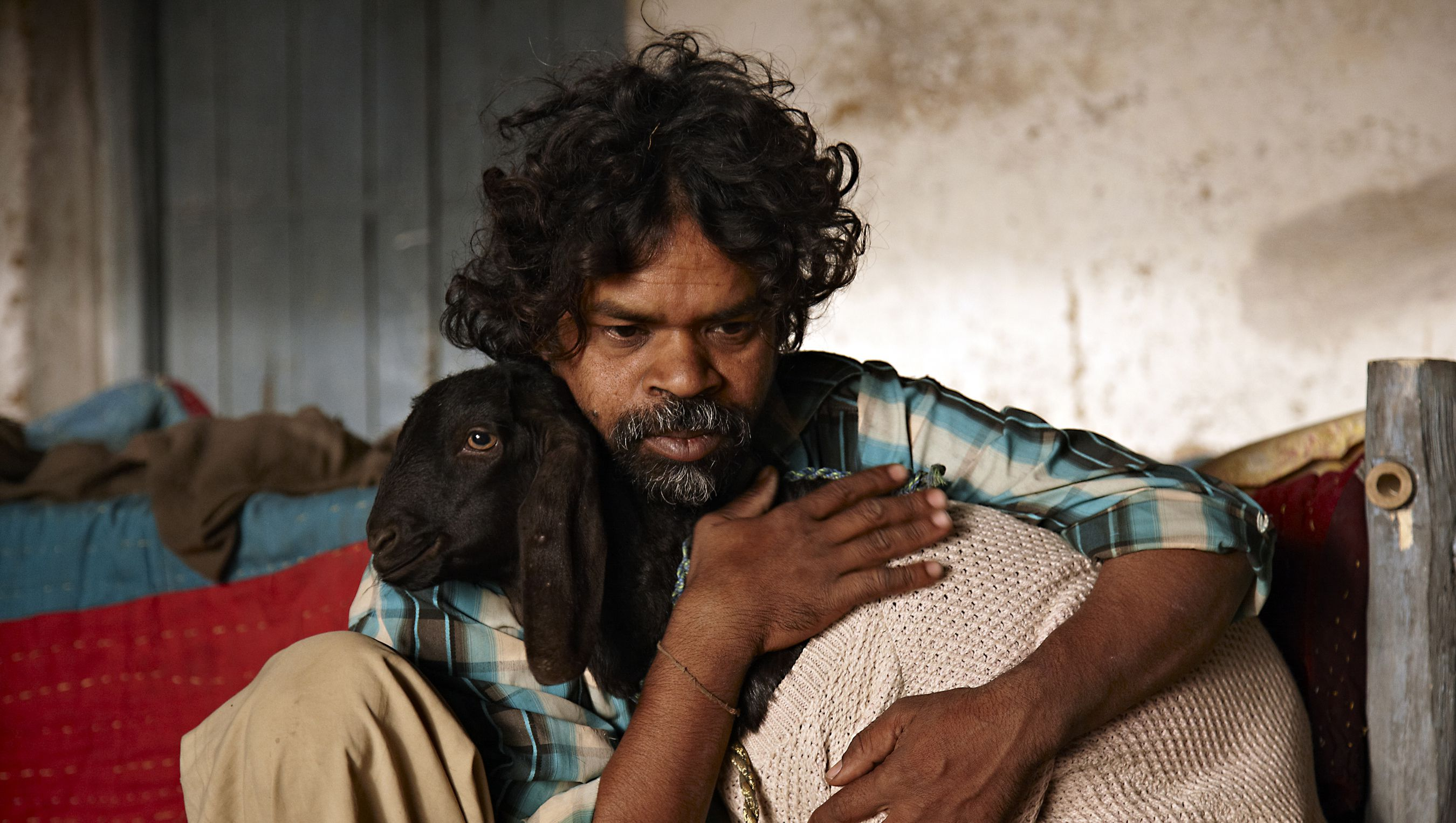 An image from Peepli Live