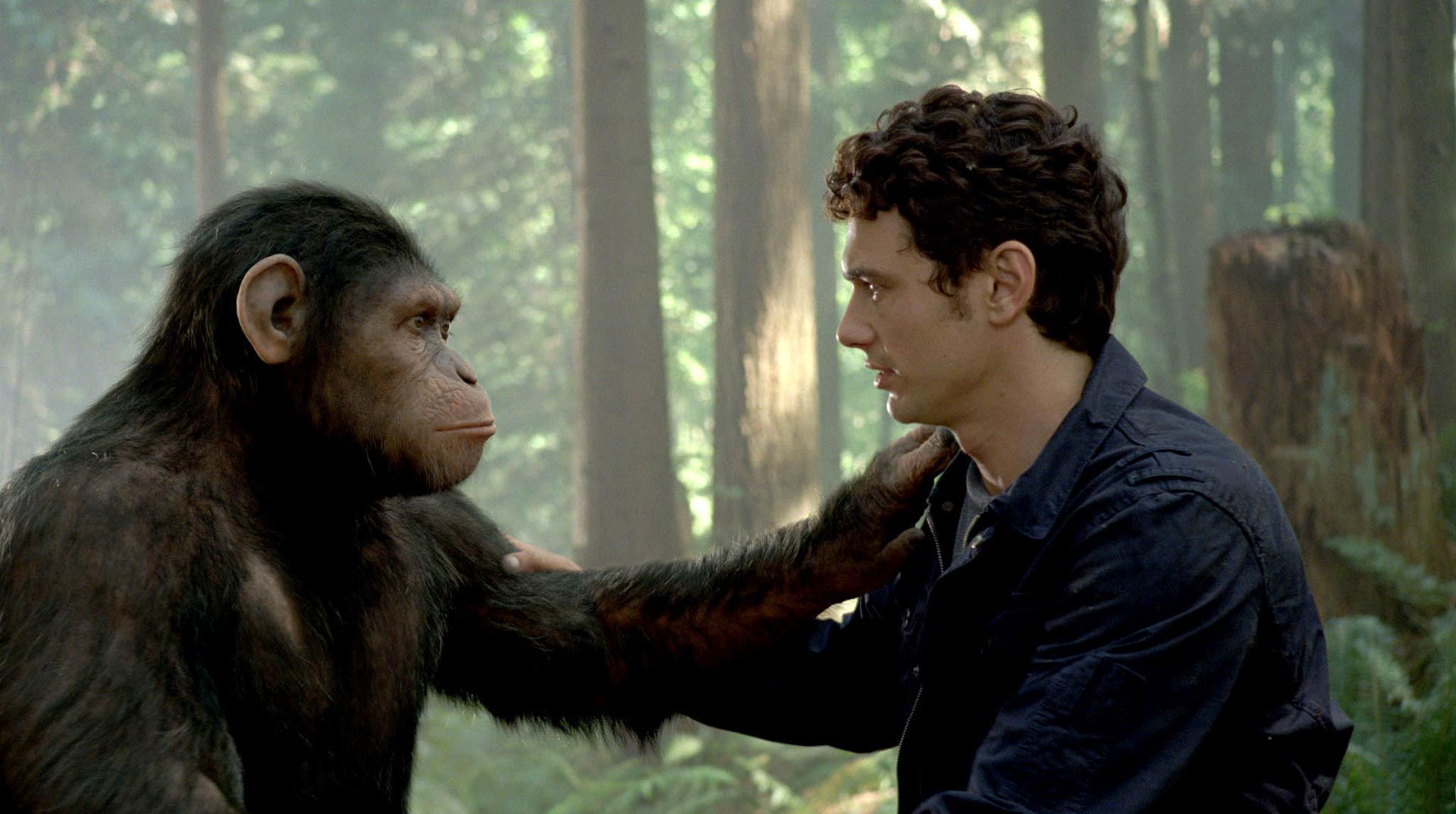 An image from Rise of the Planet of the Apes