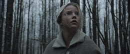 Toronto International Film Festival 2015: The Witch and Every Thing Will Be Fine