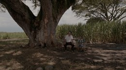 Watch an Exclusive Clip from César Augusto Acevedo's Land and Shade