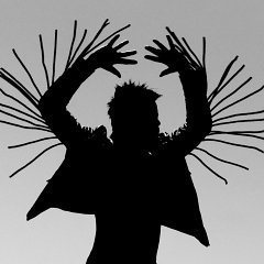 Twin Shadow : Eclipse