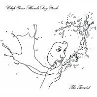 Clap Your Hands Say Yeah: The Tourist