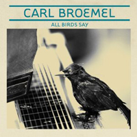 Publicity still for Carl Broemel: All Birds Say