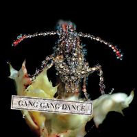 Publicity still for Gang Gang Dance: Eye Contact