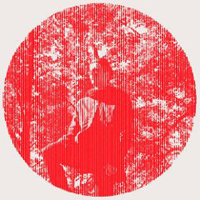 Owen Pallett: Heartland