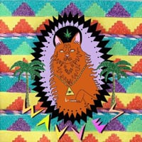 Wavves: King of the Beach