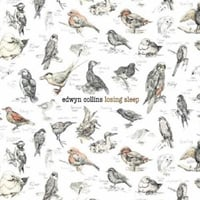 Edwyn Collins: Losing Sleep