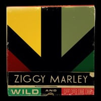 Ziggy Marley: Wild and Free