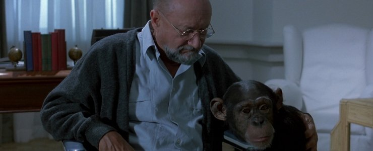 Simian Cinema: When Chimps Attack…or Make Poopie!