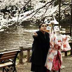 Seattle International Film Festival 2008: <em>Cherry Blossoms: Hanami</em>, <em>Faces</em>, <em>Up the Yangtze</em>, &amp; More