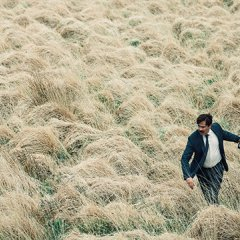 Cannes Review: <em>The Lobster</em>