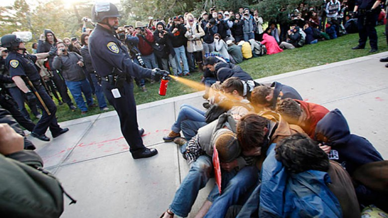 Delightful UC Davis: A Lesson In Civil Disobedience
