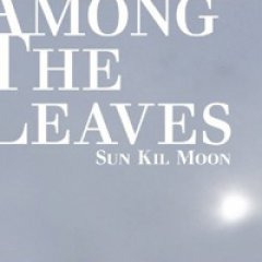 Sun Kil Moon Among the Leaves