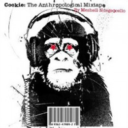 Meshell Ndegeocello Cookie: The Anthropological Mixtape