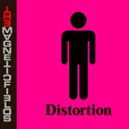 The Magnetic Fields Distortion