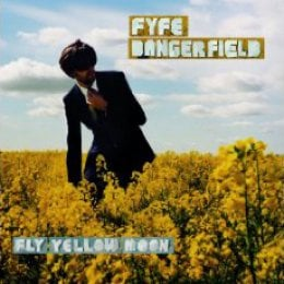 Fyfe Dangerfield Fly Yellow Moon