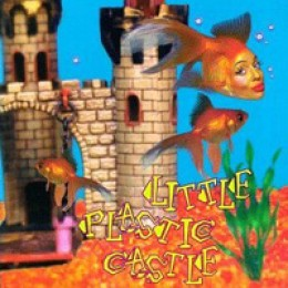 Ani DiFranco Little Plastic Castle