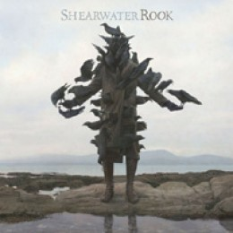 Shearwater Rook