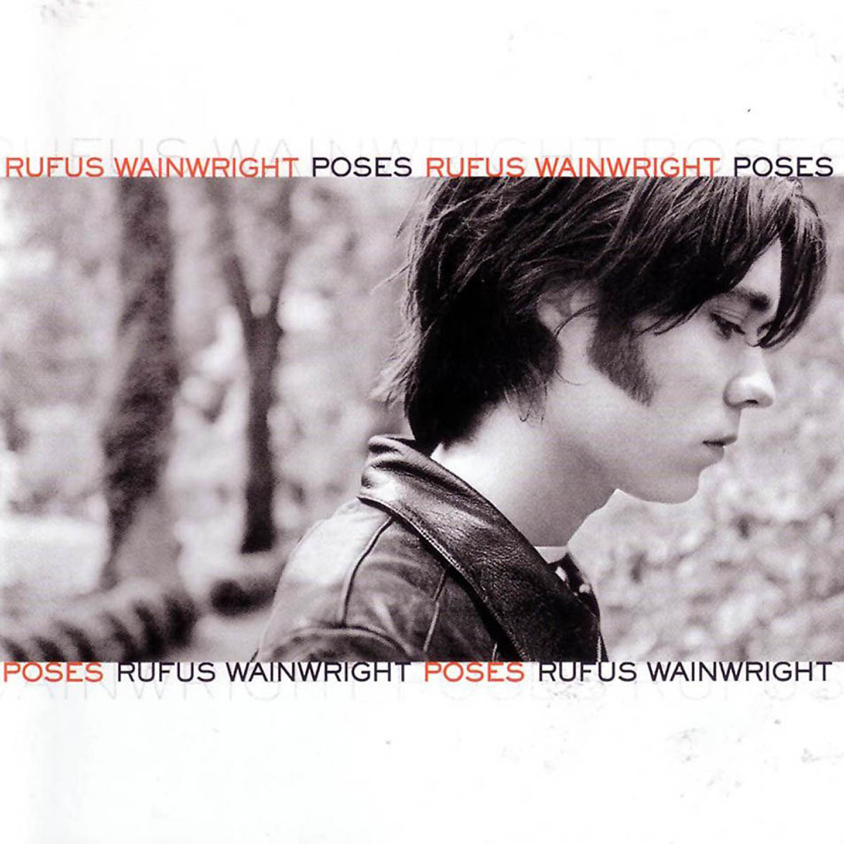 Rufus Wainwright, Poses