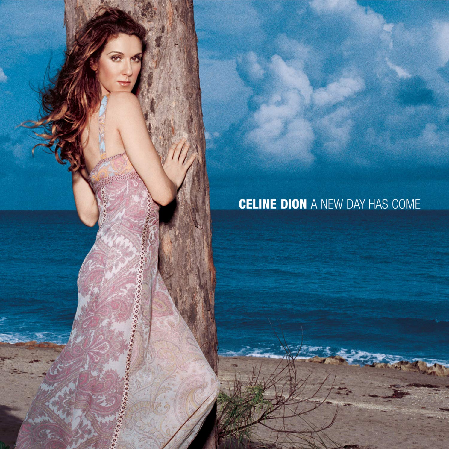 Celine Dion, A New Day Has Come