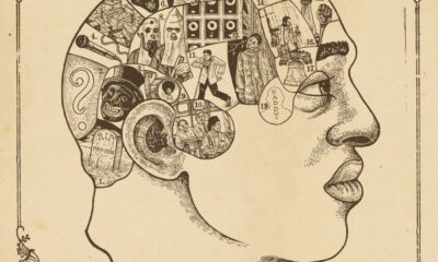 The Roots, Phrenology