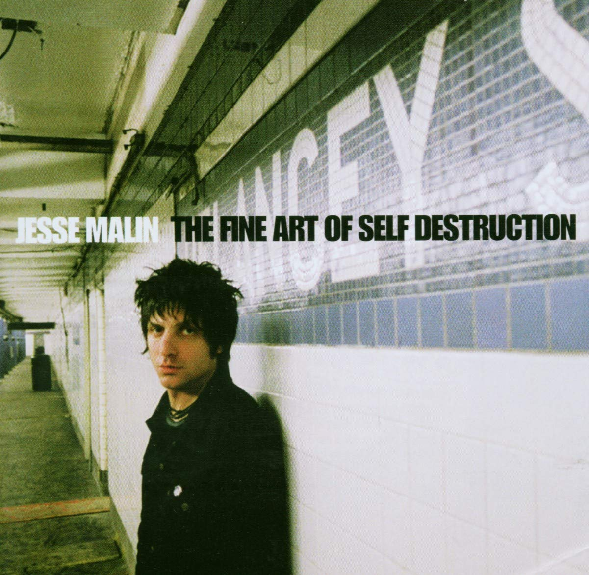 Jesse Malin, The Fine Art of Self Destruction