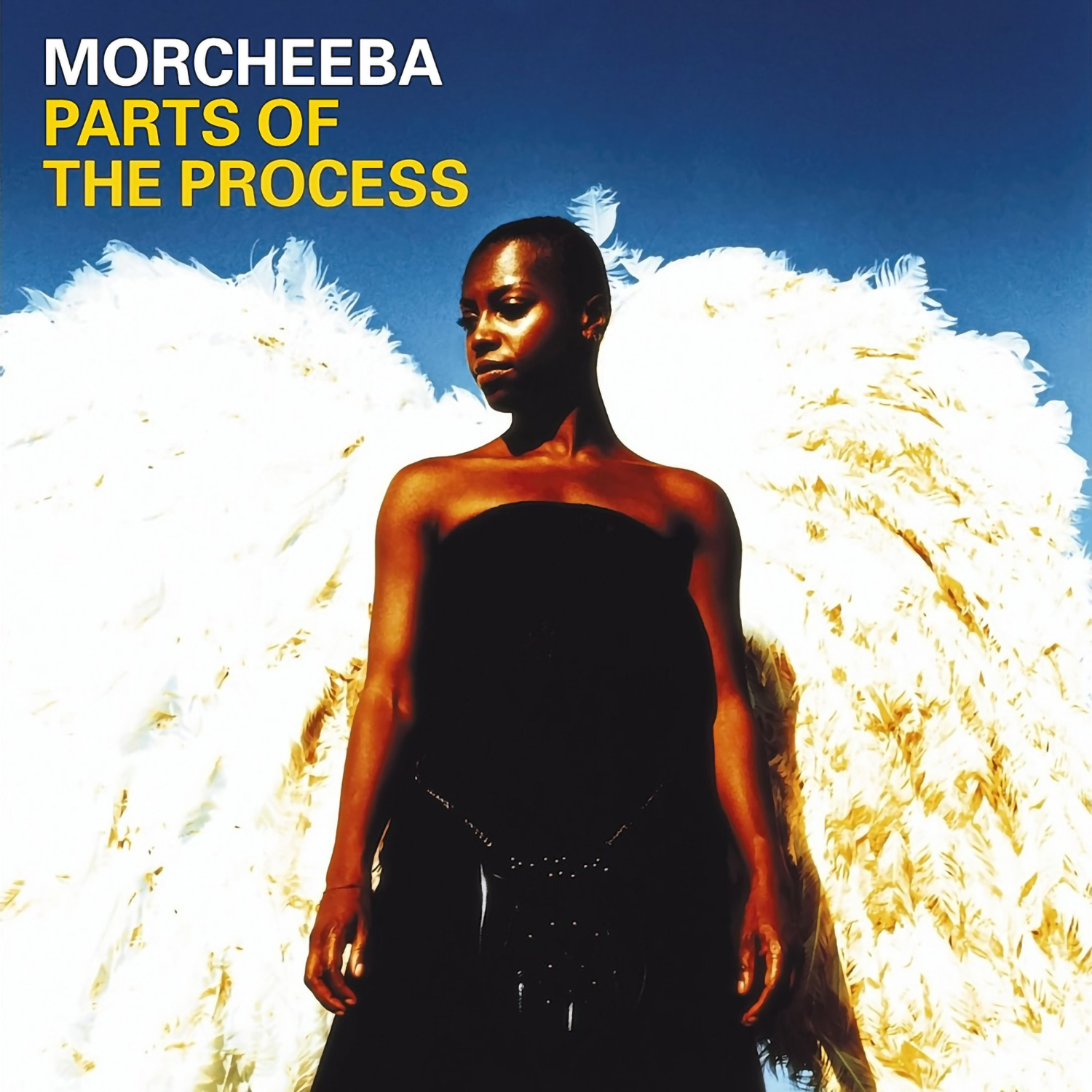 Morcheeba, Parts of the Process