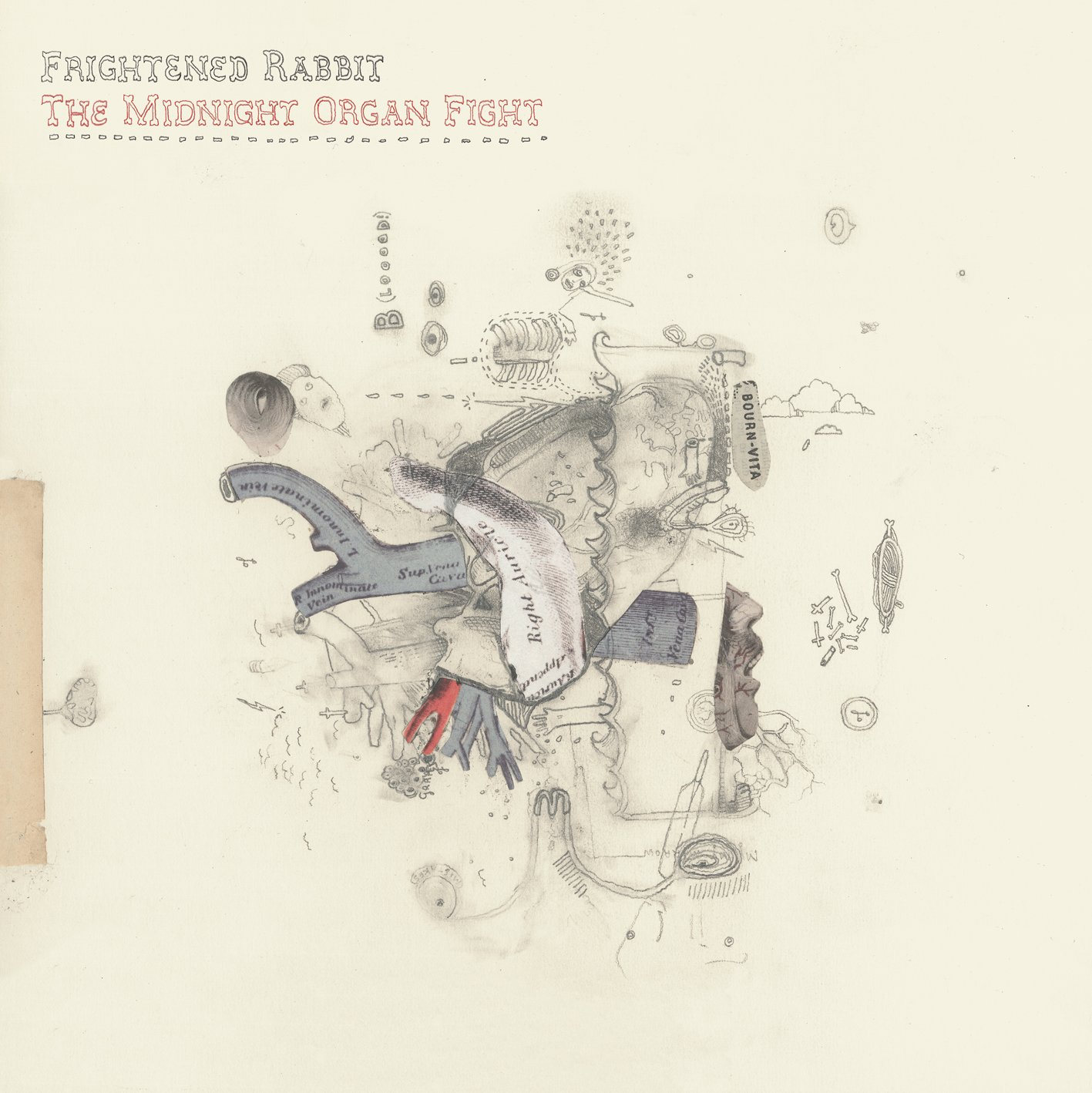Frightened Rabbit, The Midnight Organ Fight