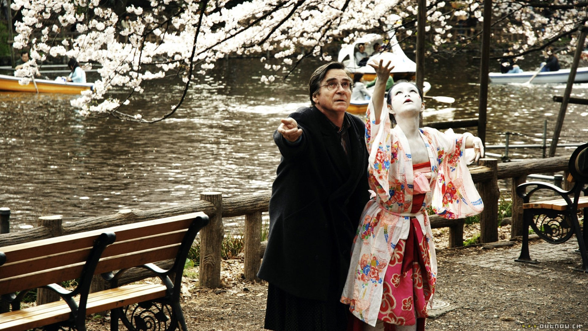 Seattle International Film Festival 2008: Cherry Blossoms: Hanami, Faces, Up the Yangtze, & More