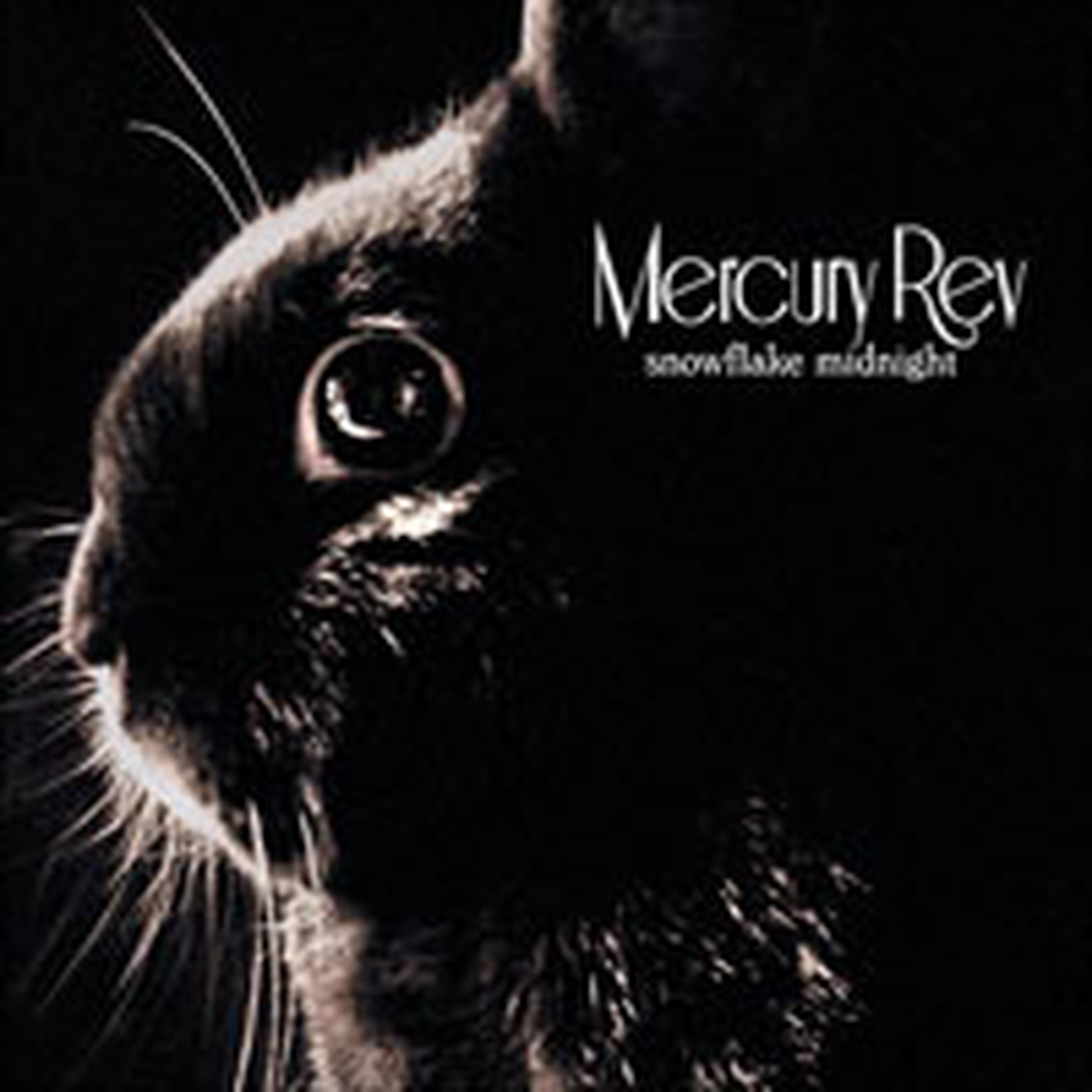 Mercury Rev, Snowflake Midnight