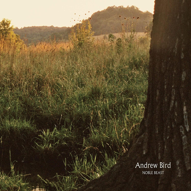 Andrew Bird, Noble Beast