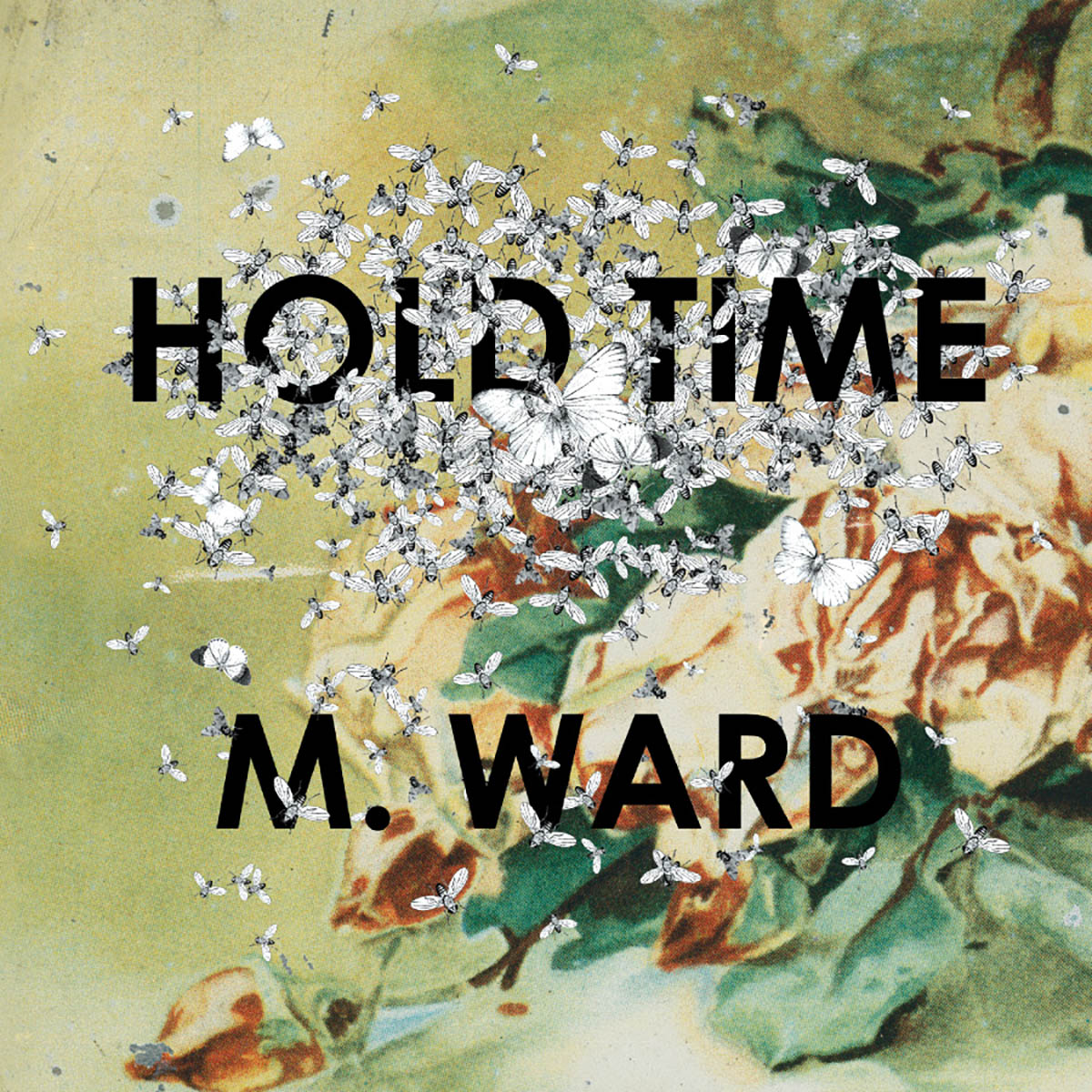 M. Ward, Hold Time