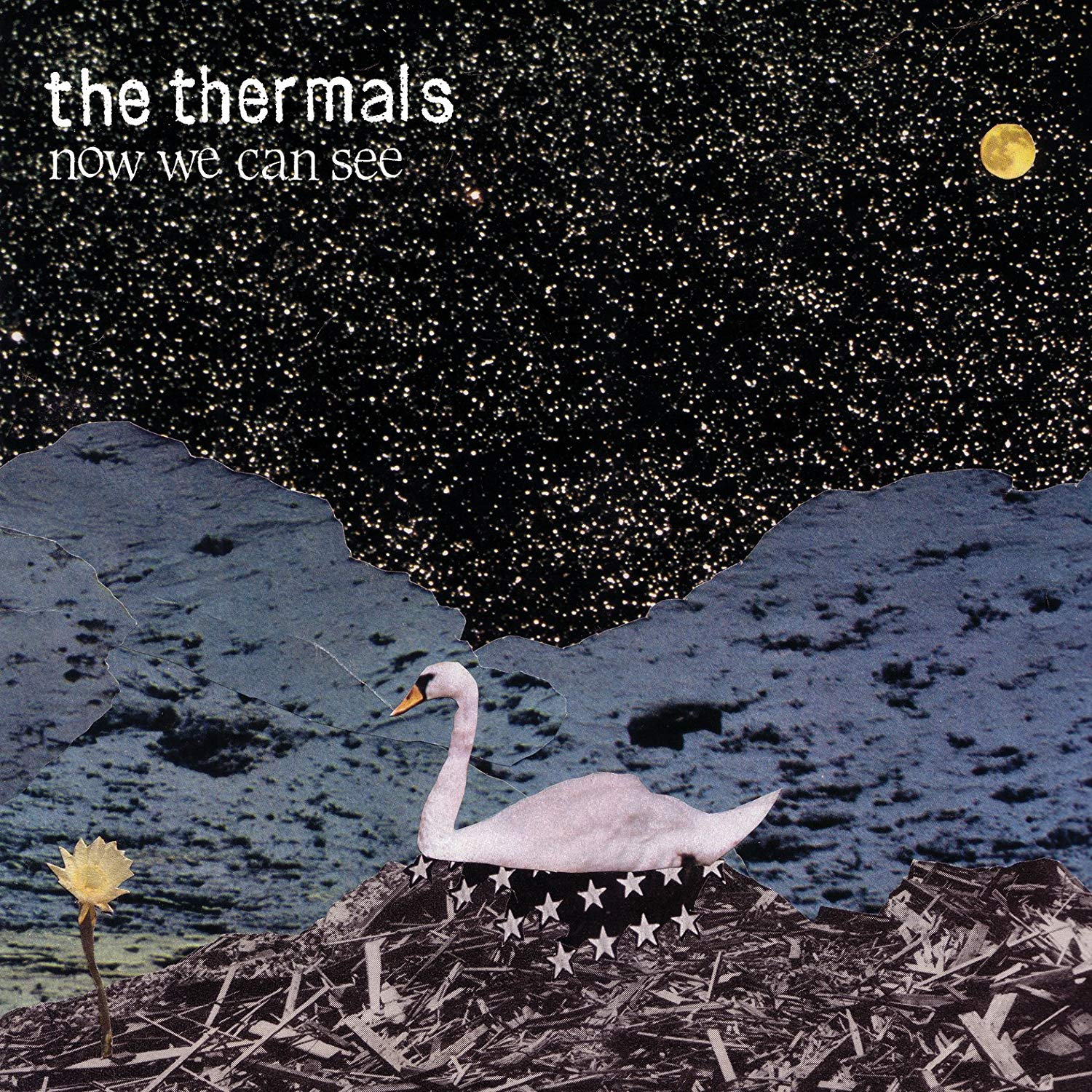 The Thermals, Now We Can See