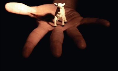 Danger Mouse and Sparklehorse, Dark Night of the Soul