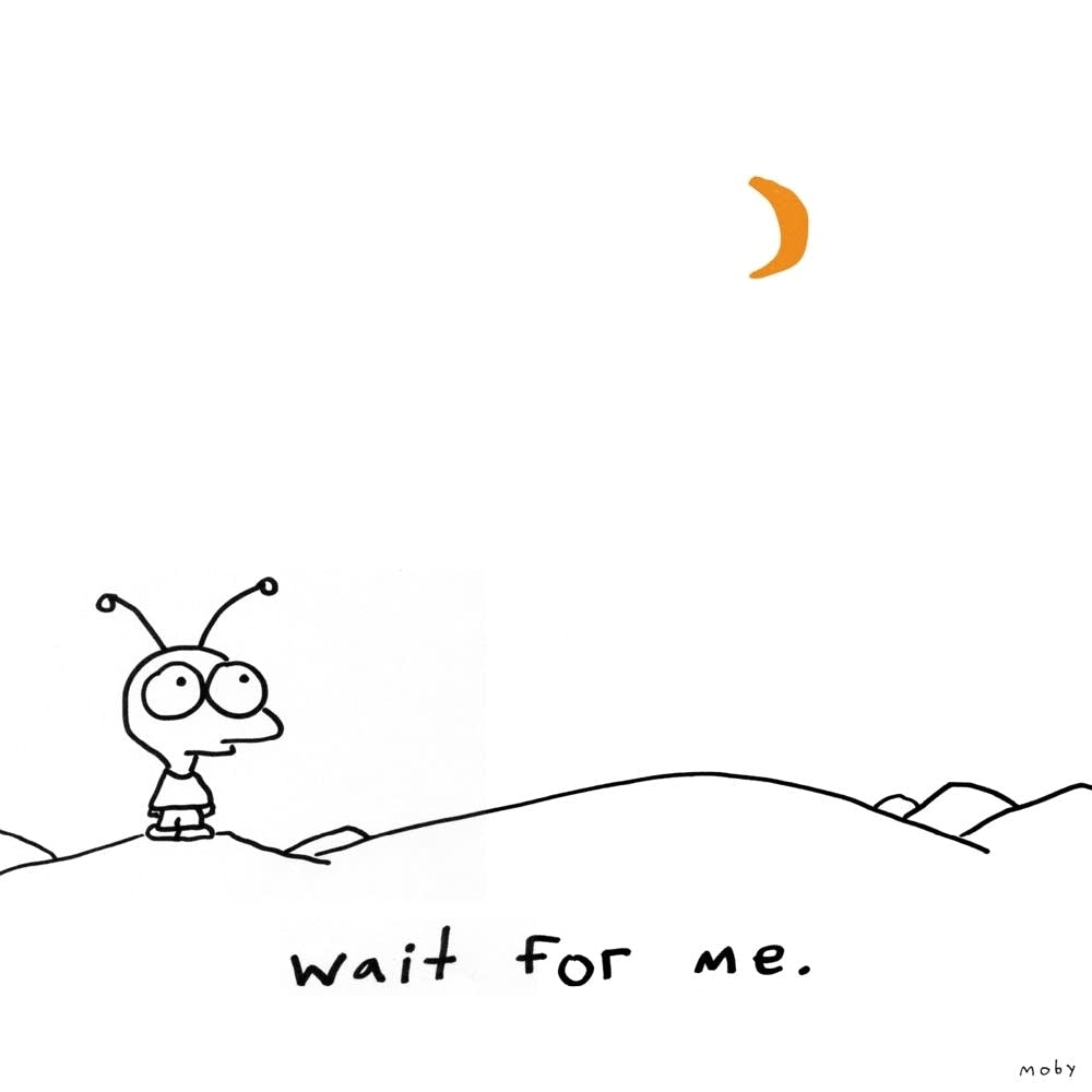 Moby, Wait for Me