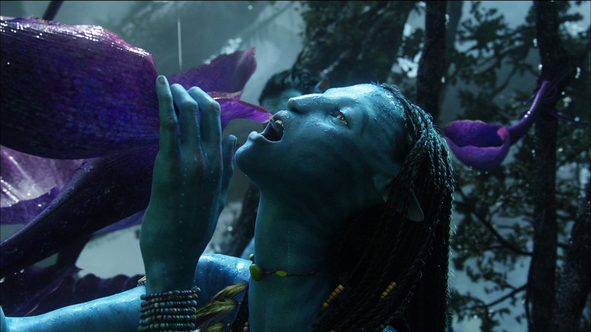 Oscar 2010 Winner Predictions: Visual Effects