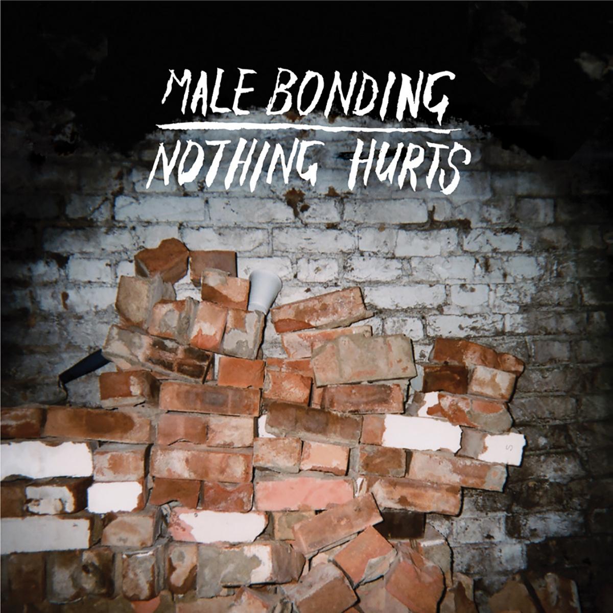 Male Bonding, Nothing Hurts