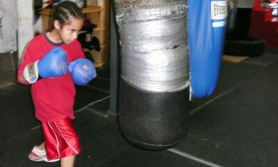New York Film Festival 2010: Boxing Gym