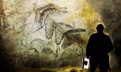 DOC NYC 2010: Cave of Forgotten Dreams