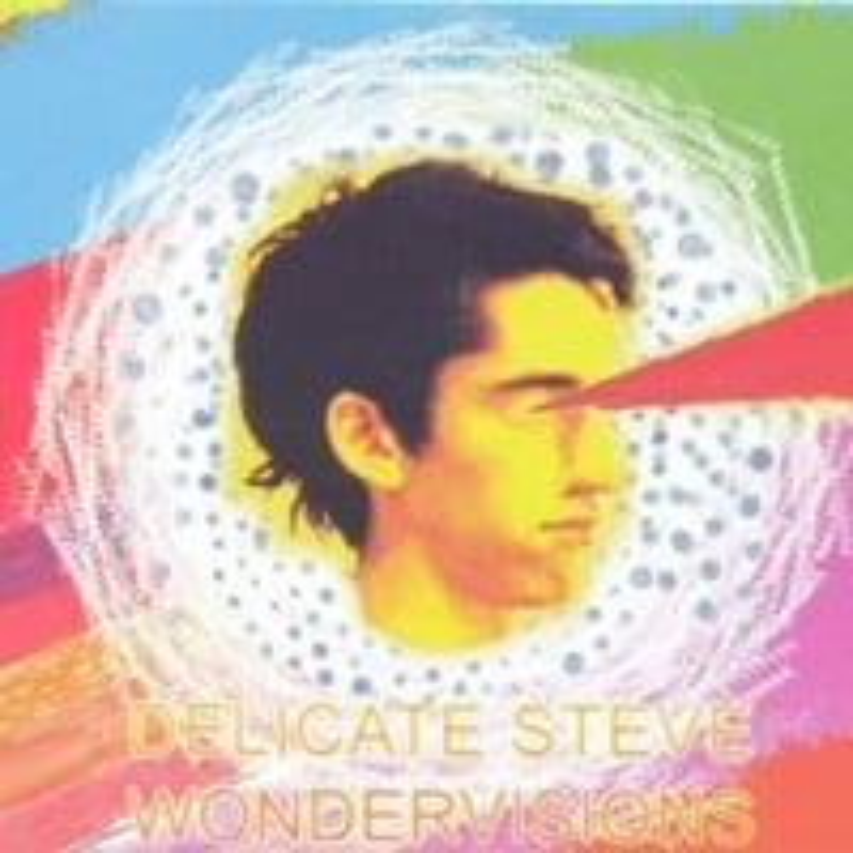 Delicate Steve, Wondervisions