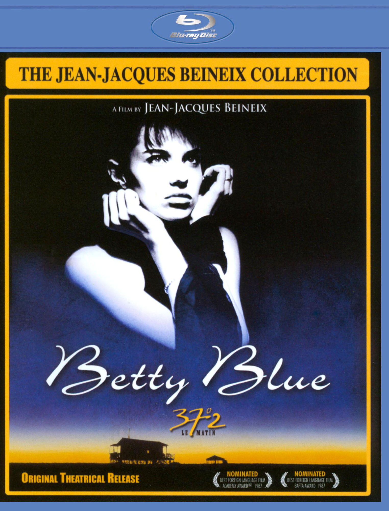 Betty Blue French vintage movie poster print