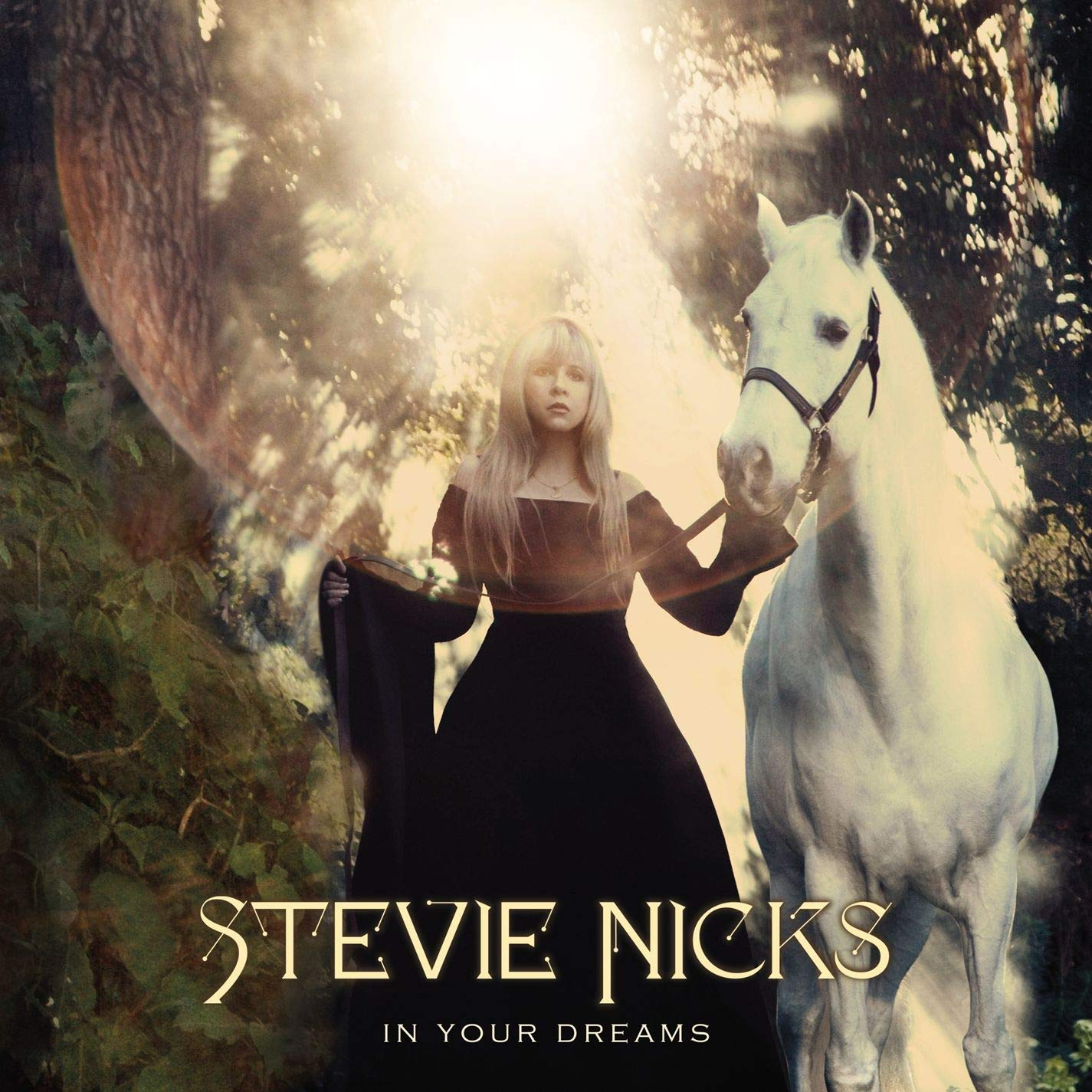 Stevie Nicks, In Your Dreams