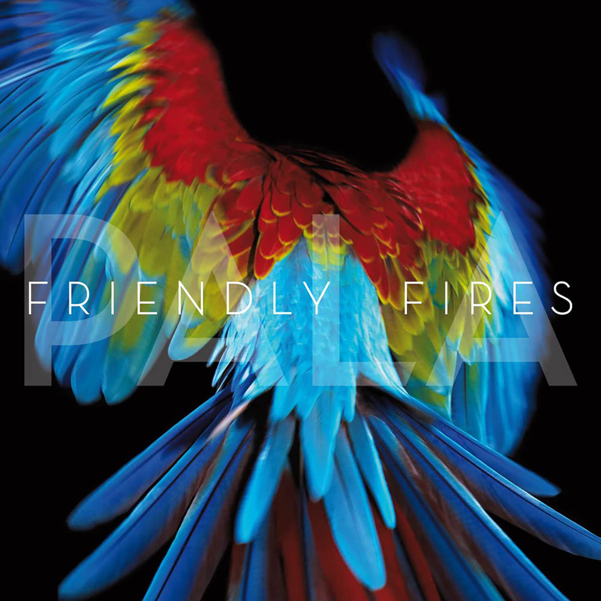 Friendly Fires, Pala