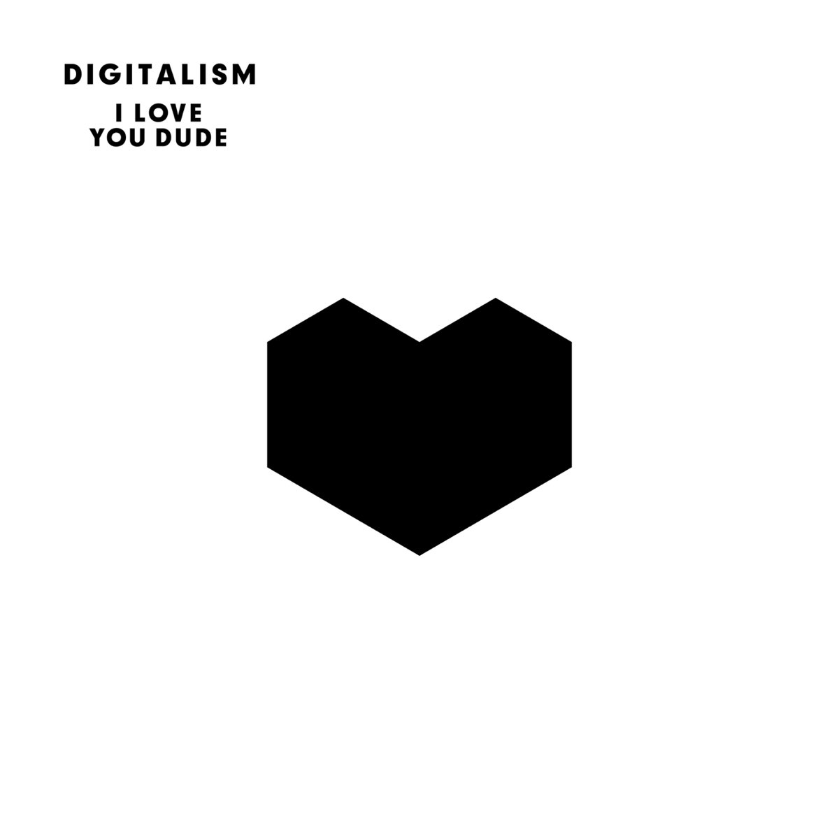 Digitalism, I Love You Dude