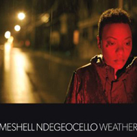 Meshell Ndegeocello, Weather