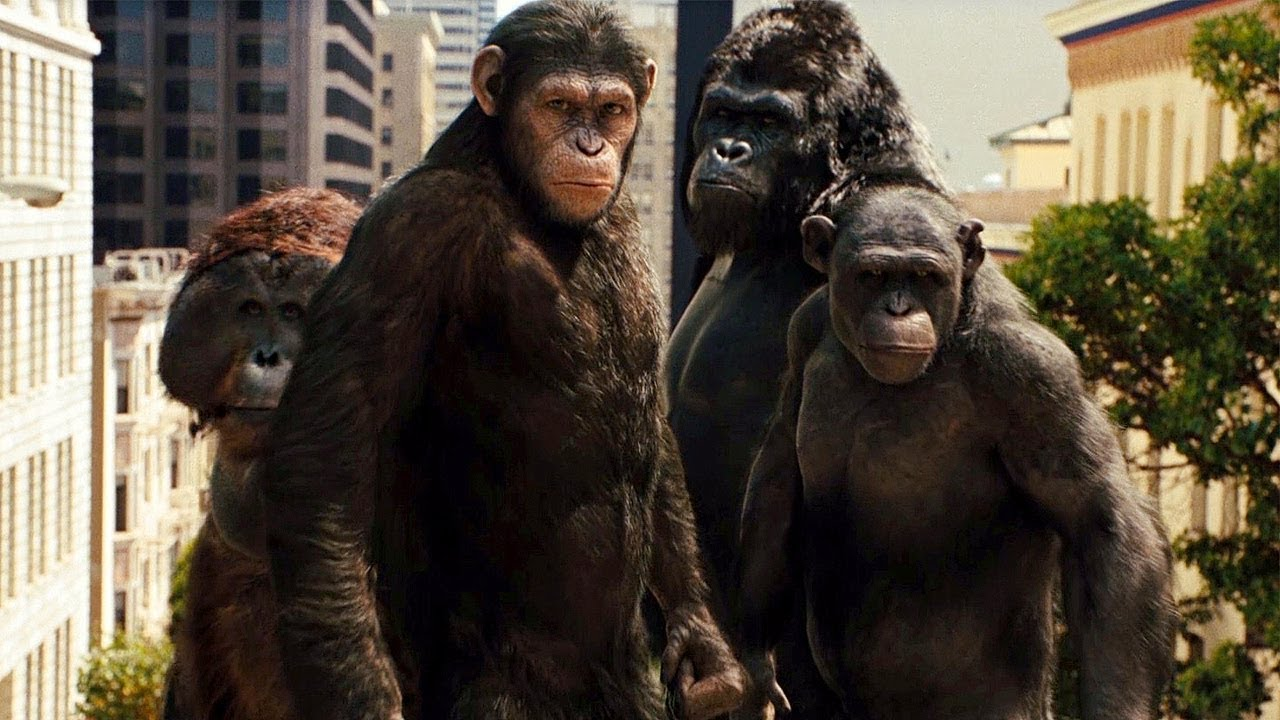 Oscar 2012 Nomination Predictions: Visual Effects